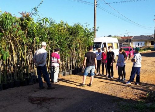 Mais de cem mudas de árvores foram plantadas no Bairro Verdes Vales