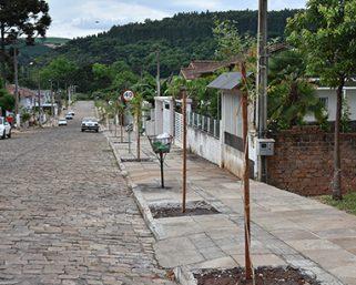 Ação realizou o plantio de aproximadamente 400 mudas de árvores