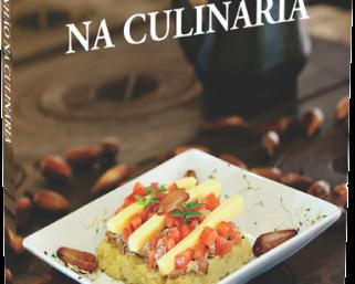 Embrapa disponibiliza gratuitamente livro de receitas com pinhão