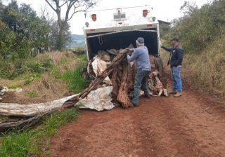 Aproximadamente 14 toneladas de lixo seco recolhido no interior recebem destino correto